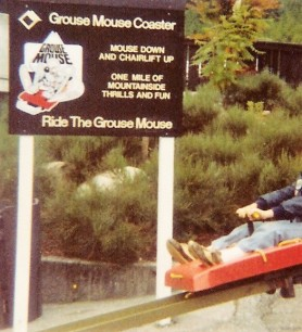 grouse-mountain-coaster-north-vancouver
