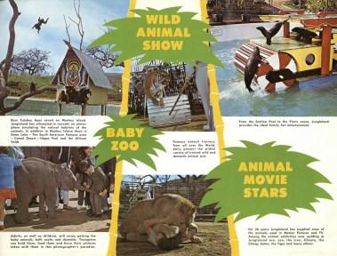 jungleland-brochure