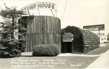 stump-house-eureka
