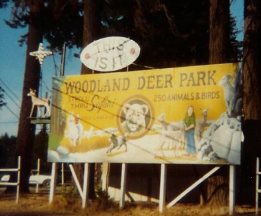 woodland-deer-park-cave-junction2