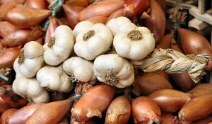 garlic-&-onions