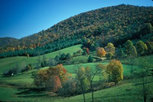 Blue Ridge Parkway Fall _jpg