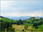 rolling_farmland
