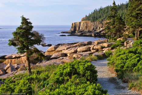 acadia-national-park-maine2