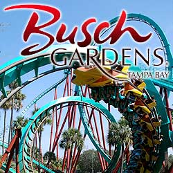 bush-gardens-tampa-bay