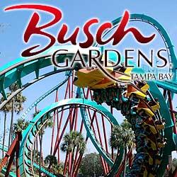 bush-gardens-tampa-bay