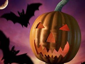 halloween-jackolantern-bats