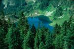 Olympic_NP