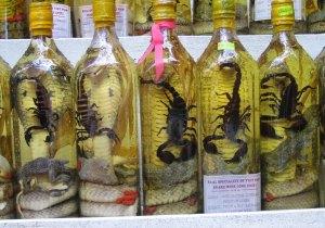snake-wine