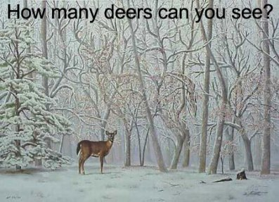 deer-optical-illusion