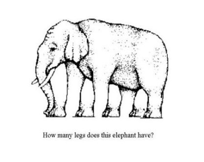 elephant-optical-illusion