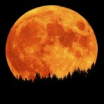 full_moon_orange