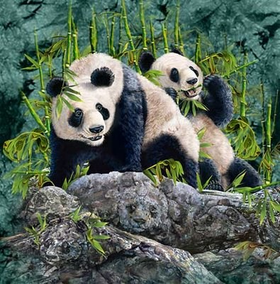 panda optical illusion - Take Your Gaming Higher With These Helpful Tips