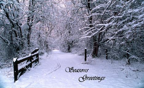 Seasons Greetings snow trees road gate