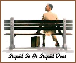 stupidisasstupiddoes