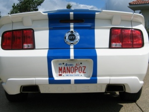 license-MANOPOZ