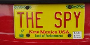 license-plate-THESPY