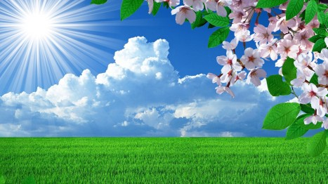 spring nature wallpapers high resolution